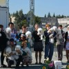 Participants of Bichon Club National specialty, Barnaul, 06.09.14